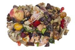 Σάπια απομονωμένη απόβλητα έννοια τροφίμων Στοκ εικόνα με δικαίωμα ελεύθερης χρήσης