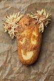 Σάπια πατάτα με το πρόσωπο χαμόγελου Στοκ Φωτογραφίες