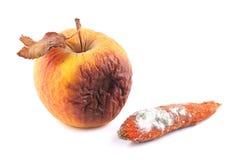 Σάπιο και moldy καρότο της Apple Στοκ Φωτογραφία