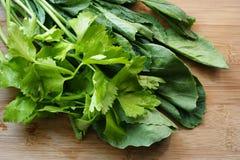 Σέλινο και κινεζικό κατσαρό λάχανο, φρέσκο λαχανικό Στοκ Φωτογραφίες