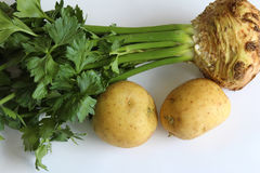 Σέλινο που ζευγαρώνεται με τις πατάτες Στοκ φωτογραφία με δικαίωμα ελεύθερης χρήσης