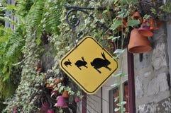 Σήμα κουνελιών! Στοκ Εικόνες