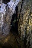 Σήραγγα σειράς μαθημάτων περιπέτειας, σπηλιά Akiyoshi στοκ εικόνες με δικαίωμα ελεύθερης χρήσης