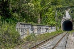 Σήραγγα σιδηροδρόμων στο θερινό δάσος Στοκ φωτογραφία με δικαίωμα ελεύθερης χρήσης