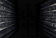 Σήραγγα στο σκοτάδι Στοκ εικόνα με δικαίωμα ελεύθερης χρήσης