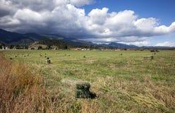 Σίκαλη, Κολοράντο στοκ φωτογραφίες με δικαίωμα ελεύθερης χρήσης