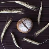 Σίκαλη συγκομιδών και ψημένο υγιές ψωμί Στοκ φωτογραφία με δικαίωμα ελεύθερης χρήσης