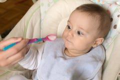 Σίτιση ενός πέντε μηνών παλαιού μωρού με ένα κουτάλι Στοκ εικόνα με δικαίωμα ελεύθερης χρήσης