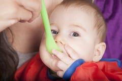 Σίτιση χεριών στο πράσινο πλαστικό κουτάλι Στοκ Φωτογραφία