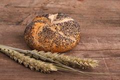 σίτος ψωμιού Στοκ Φωτογραφίες