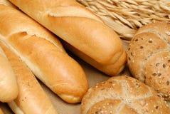 σίτος baguette Στοκ εικόνες με δικαίωμα ελεύθερης χρήσης