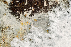 σίδηρος σκουριασμένος Στοκ Εικόνα