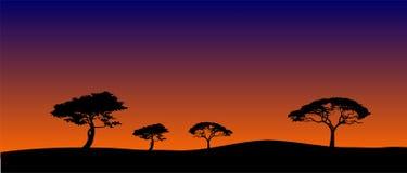 σαβάνα τοπίων s βραδιού διανυσματική απεικόνιση
