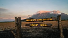 Σαβάνα Bekol στο εθνικό πάρκο Baluran στοκ εικόνες