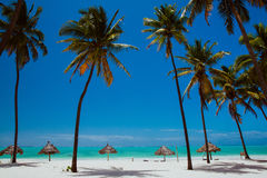 Σαββατοκύριακο στην μπλε ωκεάνια παραλία Zanzibar Στοκ Φωτογραφία
