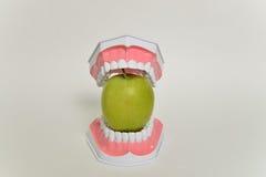 Σαγόνι και πράσινο μήλο, οδοντική έννοια προσοχής Στοκ Φωτογραφία