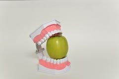 Σαγόνι και πράσινο μήλο, οδοντική έννοια προσοχής Στοκ εικόνες με δικαίωμα ελεύθερης χρήσης