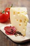 σαλάμι τυριών Στοκ φωτογραφίες με δικαίωμα ελεύθερης χρήσης
