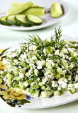 σαλάτα αγγουριών Στοκ εικόνα με δικαίωμα ελεύθερης χρήσης