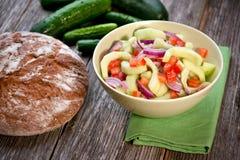 Σαλάτα αγγουριών Zesty στοκ εικόνες