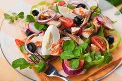 σαλάτα ελιών ψαριών αυγών Στοκ Εικόνα