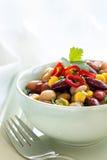 σαλάτα καλαμποκιού τσίλι φασολιών Στοκ φωτογραφία με δικαίωμα ελεύθερης χρήσης