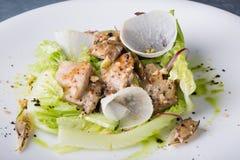 Σαλάτα κοτόπουλου με το μαρούλι, Στοκ φωτογραφίες με δικαίωμα ελεύθερης χρήσης