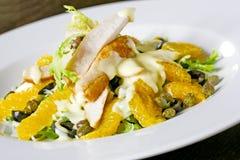 σαλάτα κοτόπουλου στοκ εικόνα