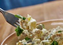 Σαλάτα κοτόπουλου Zesty που διαδίδεται στοκ φωτογραφίες με δικαίωμα ελεύθερης χρήσης