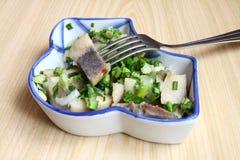 σαλάτα κρεμμυδιών ρεγγών Στοκ φωτογραφία με δικαίωμα ελεύθερης χρήσης