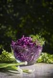 Σαλάτα κόκκινων λάχανων στοκ εικόνες με δικαίωμα ελεύθερης χρήσης