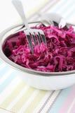 Σαλάτα κόκκινων λάχανων Στοκ Εικόνες