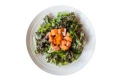 Σαλάτα λαχανικών φύλλων με το καπνισμένο ύφος τροφίμων σολομών ιαπωνικό Στοκ φωτογραφίες με δικαίωμα ελεύθερης χρήσης