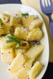 σαλάτα μάγκο στοκ εικόνες με δικαίωμα ελεύθερης χρήσης