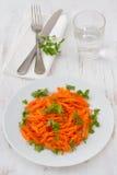 σαλάτα μαϊντανού καρότων Στοκ εικόνες με δικαίωμα ελεύθερης χρήσης