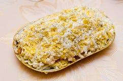 Σαλάτα με τα κρεμμύδια, το κρέας και τη μαγιονέζα αυγών σε ένα πιάτο στοκ φωτογραφία με δικαίωμα ελεύθερης χρήσης