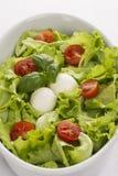 Σαλάτα με τις ντομάτες και μοτσαρέλα από την κορυφή στοκ φωτογραφίες με δικαίωμα ελεύθερης χρήσης