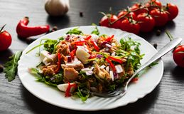 Σαλάτα με το πράσινο rucola, τυρί, τόνος, κρεμμύδι, πιπέρι στο άσπρο κύπελλο στο σκοτεινό ξύλινο υπόβαθρο Στοκ Εικόνα