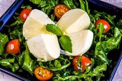 Σαλάτα με το τυρί, τις ντομάτες και το arugula paneer Στοκ Εικόνες