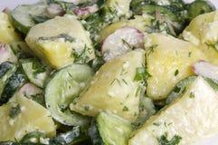 Σαλάτα πατατών ..... Στοκ εικόνα με δικαίωμα ελεύθερης χρήσης