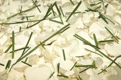 σαλάτα πατατών Στοκ Φωτογραφίες