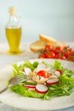 σαλάτα πιάτων κοτόπουλο&upsi Στοκ εικόνες με δικαίωμα ελεύθερης χρήσης