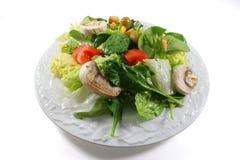 σαλάτα πιάτων Στοκ εικόνες με δικαίωμα ελεύθερης χρήσης