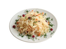 σαλάτα στιλβωτικής ουσί& Στοκ Εικόνα