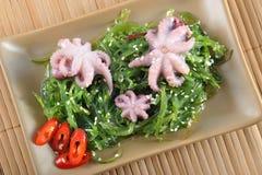Σαλάτα του chukka κατσαρού λάχανου θάλασσας, χταπόδι, σάλτσα σόγιας - σπόρος σουσαμιού τσιπ στοκ εικόνες