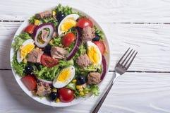 Σαλάτα τόνου με τις ντομάτες Στοκ φωτογραφία με δικαίωμα ελεύθερης χρήσης