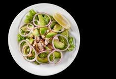 Σαλάτα τόνου με το αβοκάντο και arugula σε ένα άσπρο πιάτο, σε ένα μαύρο υπόβαθρο Στοκ Εικόνες