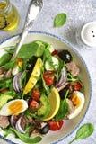 Σαλάτα τόνου με το σπανάκι φύλλων σαλάτας μιγμάτων και το arugula, αβοκάντο Στοκ εικόνα με δικαίωμα ελεύθερης χρήσης