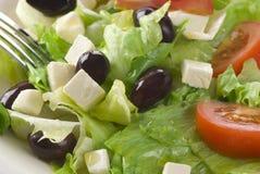 σαλάτα φέτας τυριών Στοκ φωτογραφία με δικαίωμα ελεύθερης χρήσης