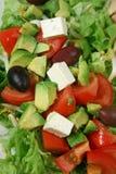 σαλάτα φέτας 2 τυριών Στοκ εικόνες με δικαίωμα ελεύθερης χρήσης